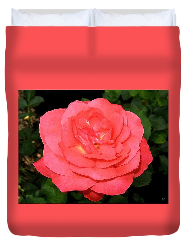 Rose Duvet Cover featuring the photograph Roses 3 by Will Borden