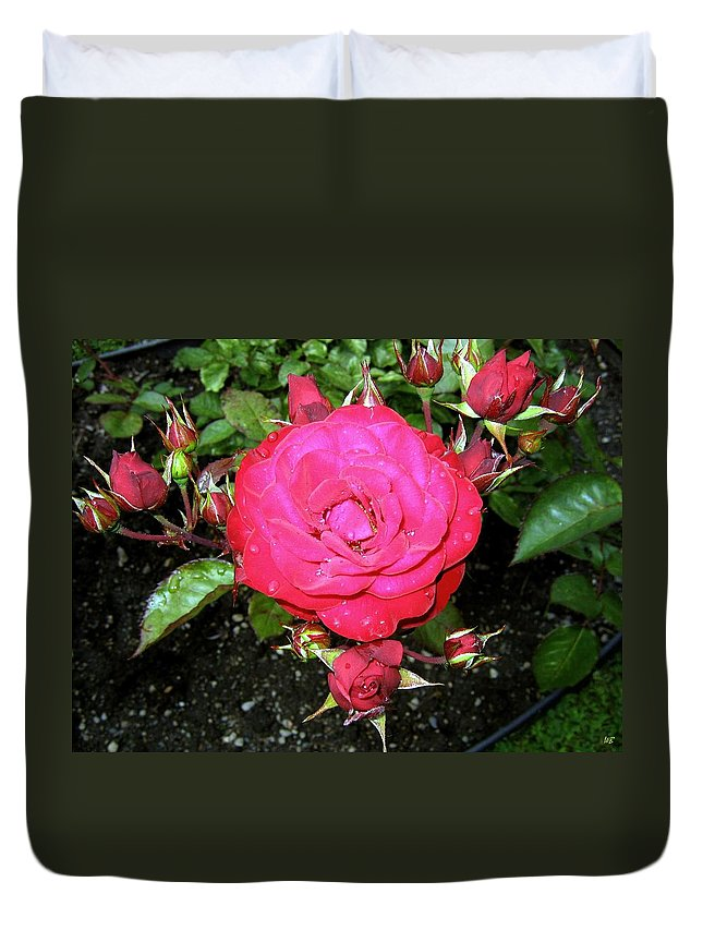Rose Duvet Cover featuring the photograph Roses 5 by Will Borden