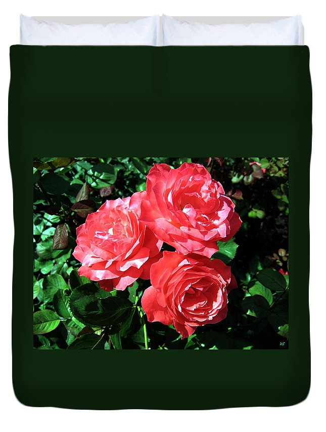 Roses Duvet Cover featuring the photograph Roses 9 by Will Borden