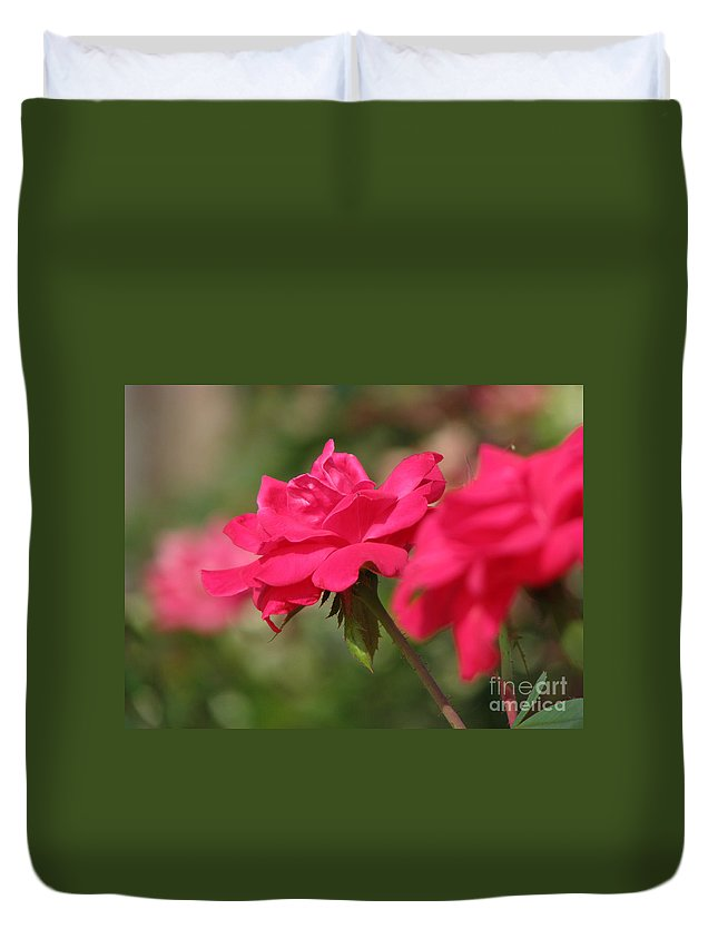Rose Duvet Cover featuring the photograph Roses by Amanda Barcon