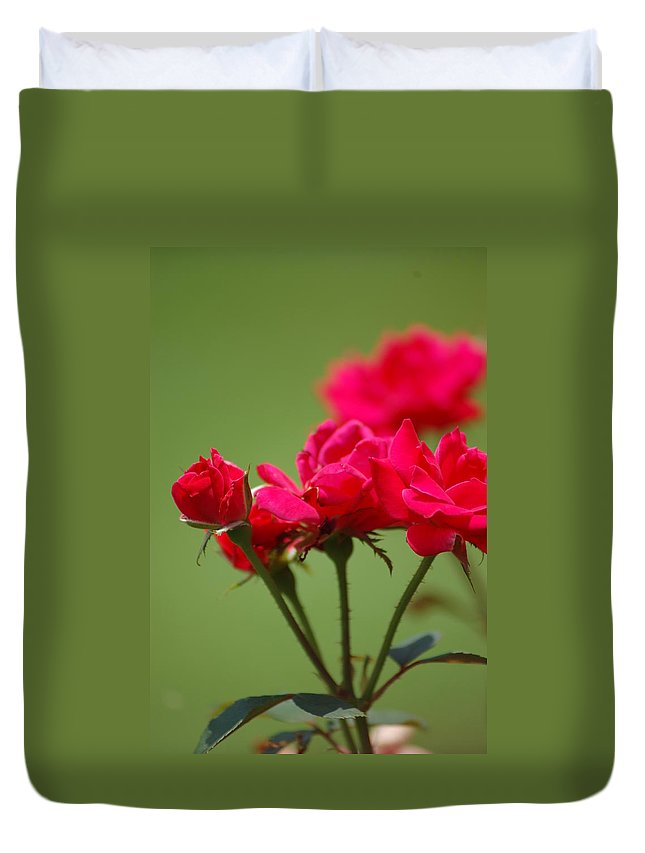 Roses Duvet Cover featuring the photograph Roses by Donna Bentley