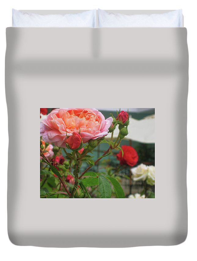 Rose Duvet Cover featuring the photograph Roses Everywhere by JAMART Photography