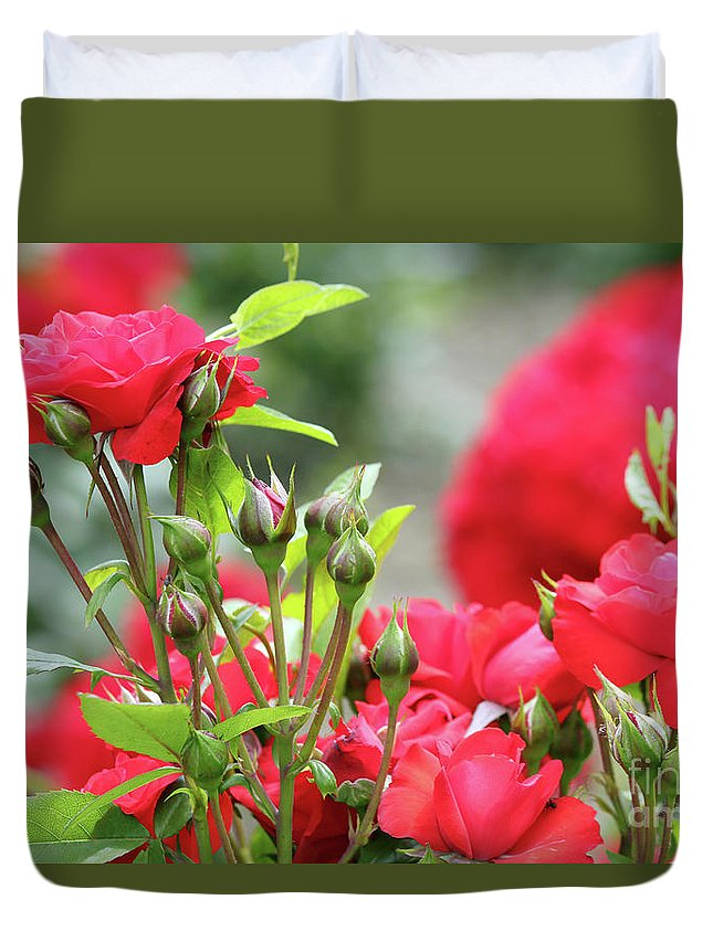 Rose Duvet Cover featuring the photograph Roses Nature Spring Scene by Goce Risteski