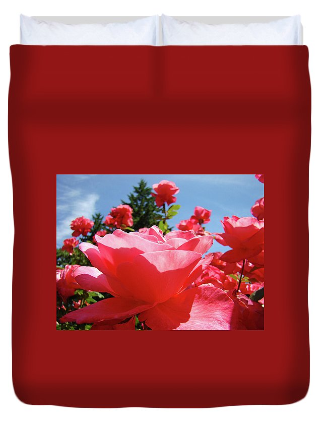 Rose Duvet Cover featuring the photograph Roses Pink Rose Landscape Summer Blue Sky Art Prints Baslee Troutman by Baslee Troutman