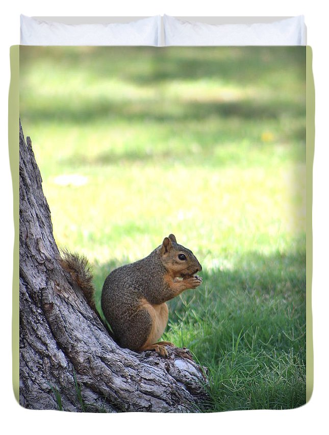 Squirrel Duvet Cover featuring the photograph Roswell Squirrel by Colleen Cornelius