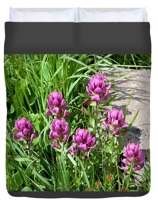 Colorado Duvet Cover featuring the photograph Rosy Wildflowers by Julia McHugh