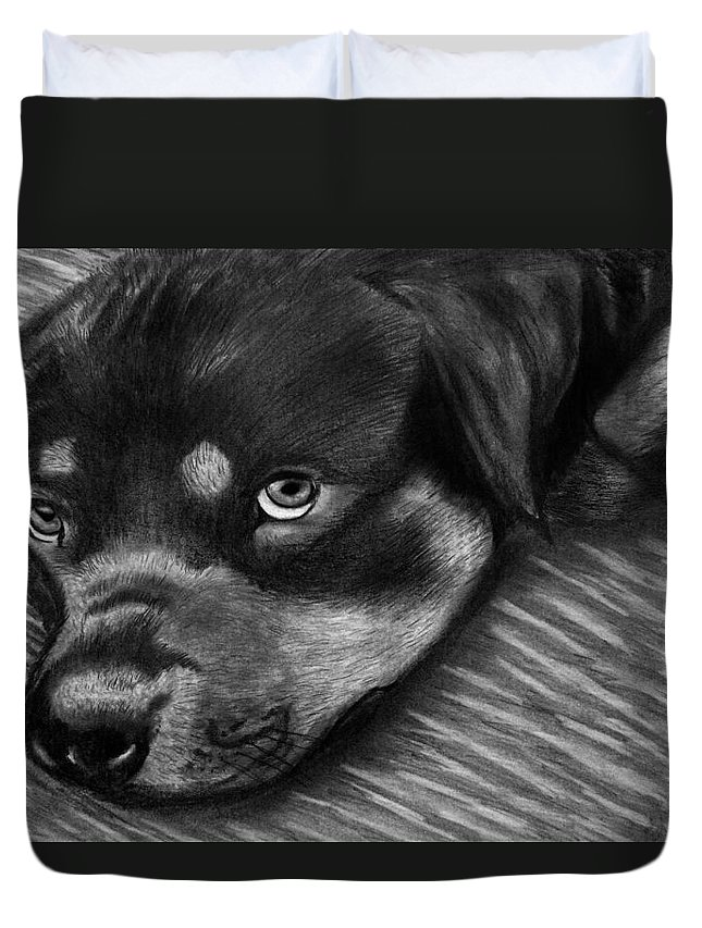 Rot Wilier Duvet Cover featuring the drawing Rotty by Peter Piatt