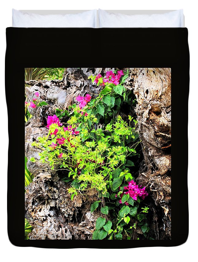 Flowers Duvet Cover featuring the photograph Rough Beauty by Ian MacDonald