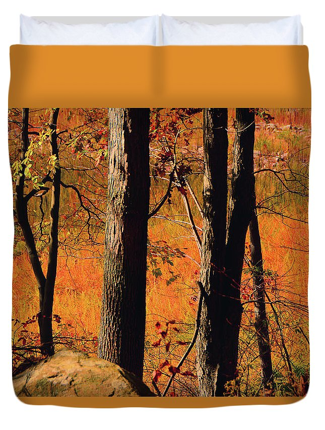 Round Valley State Park Duvet Cover featuring the photograph Round Valley State Park 3 by Raymond Salani III