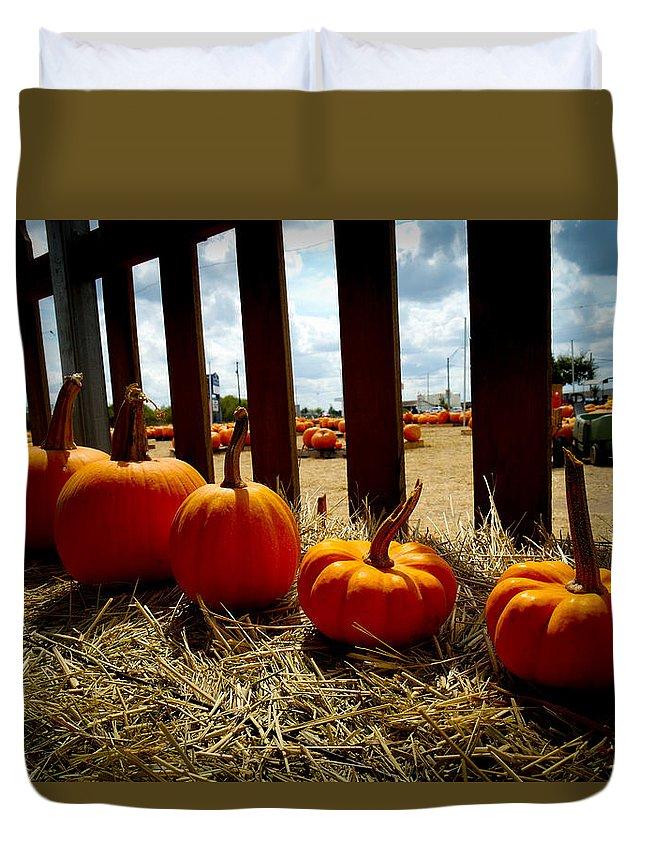 Pumpkin Duvet Cover featuring the photograph Row Of Pumpkins Sitting by Marisela Mungia