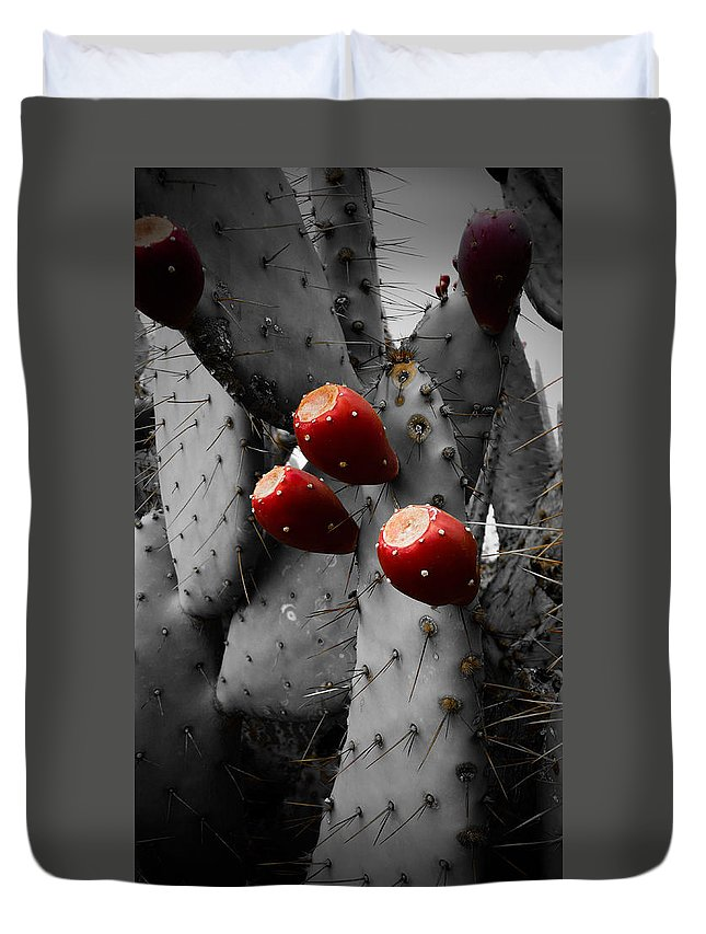 Cacti Duvet Cover featuring the photograph Rubicund Thorn by Dawna Bowles