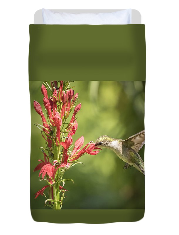 Ruby Throated Hummingbird Duvet Cover featuring the photograph Ruby Throated Hummingbird 2-2015 by Thomas Young
