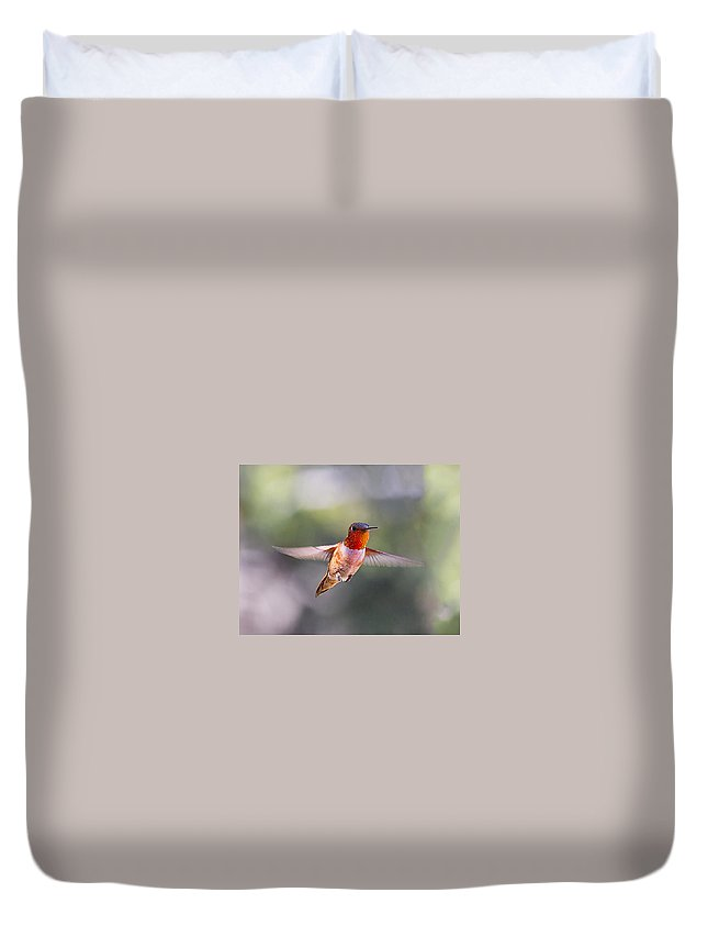 Hummingbird Duvet Cover featuring the photograph Rufous Hummingbird by Lowell Monke