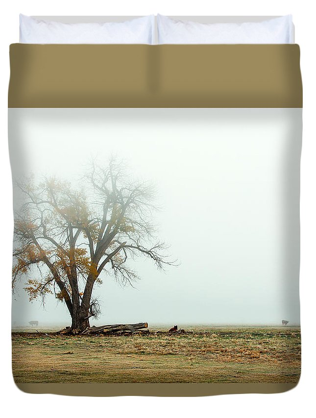 Autumn Duvet Cover featuring the photograph Rural Pasture And Tree by Todd Klassy