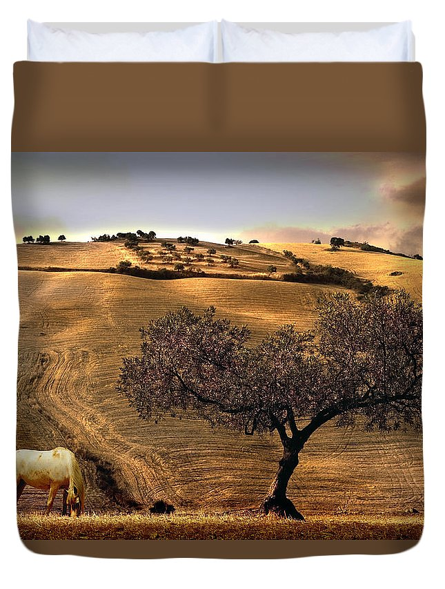 Landscape Duvet Cover featuring the photograph Rural Spain View by Mal Bray