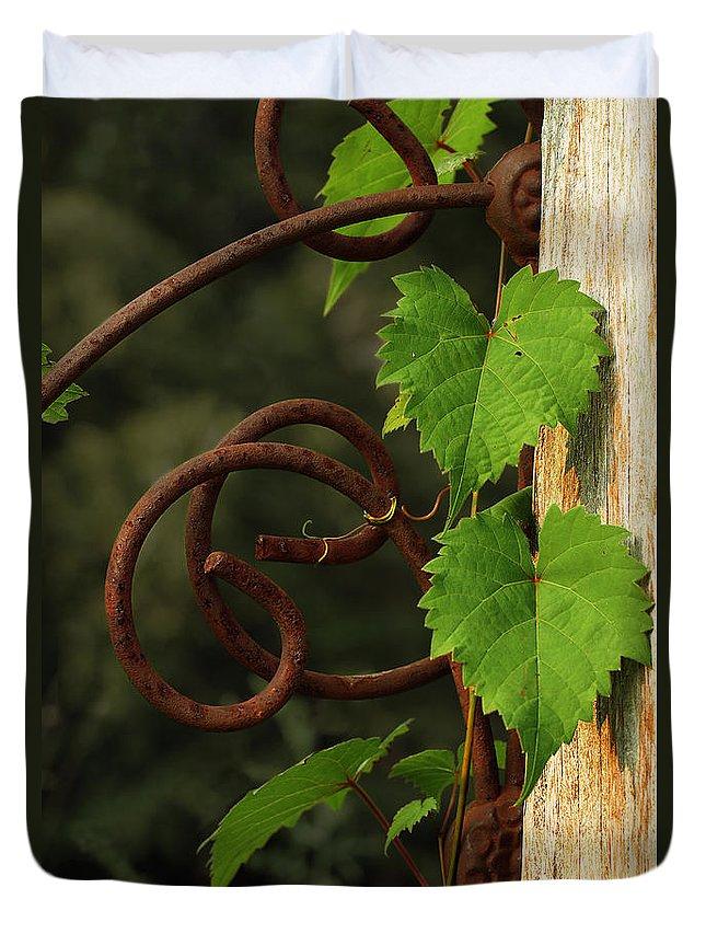 Grape Vine Duvet Cover featuring the photograph Rust Vine by Grant Groberg