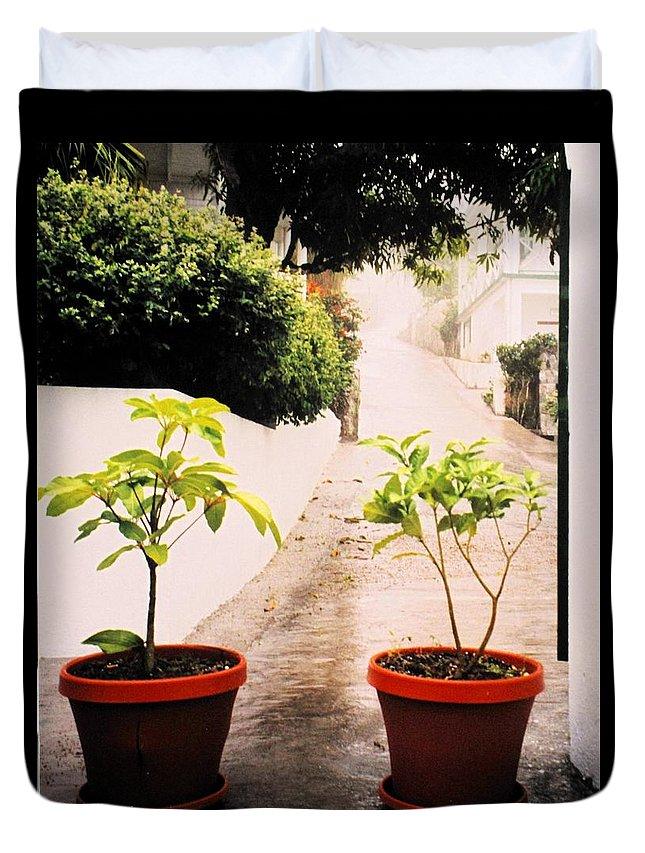 Saba Duvet Cover featuring the photograph Saba by Ian MacDonald