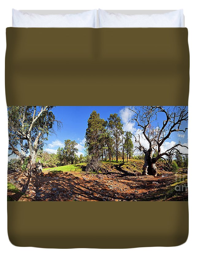 Sacred Canyon Flinders Ranges South Australia Australian Landscape Pano Panorama Outback Spring Duvet Cover featuring the photograph Sacred Canyon, Flinders Ranges by Bill Robinson