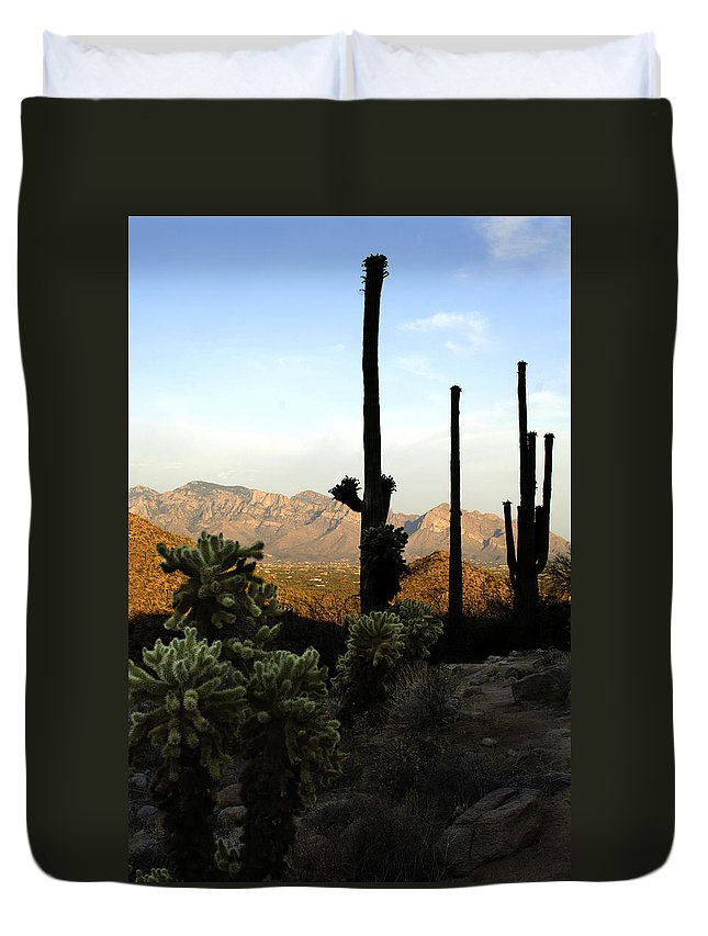 Saguaro Duvet Cover featuring the photograph Saguaro Silhouette by Jill Reger