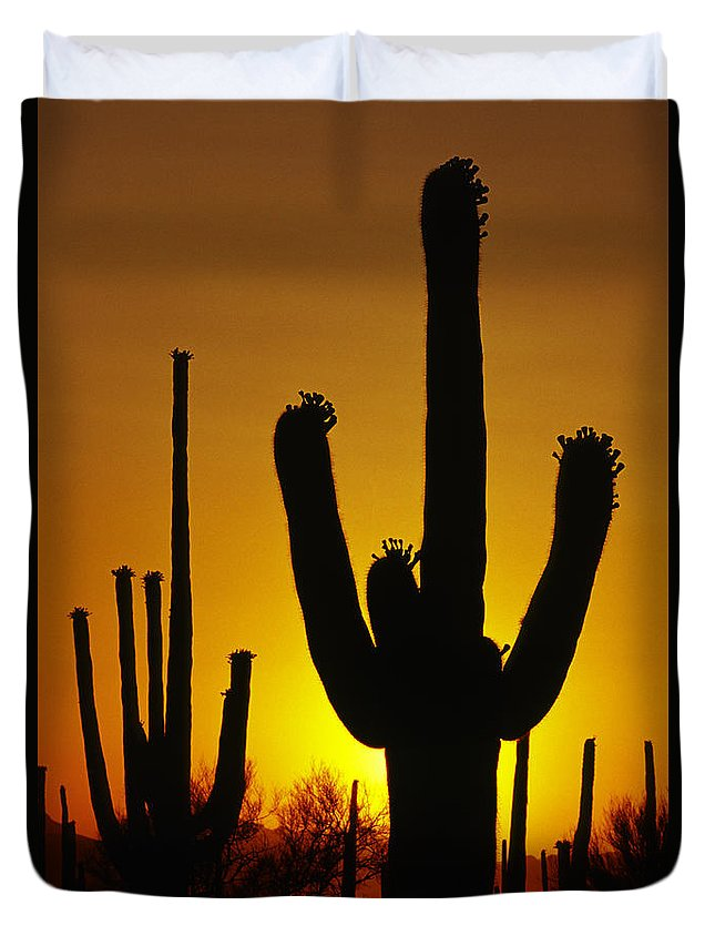 Southwest Duvet Cover featuring the photograph Saguaro Sunset by Sandra Bronstein