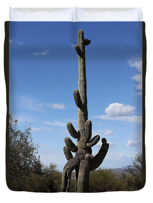 Saguaro With Extra Legs Duvet Cover featuring the photograph Saguaro With Extra Legs by Tom Janca