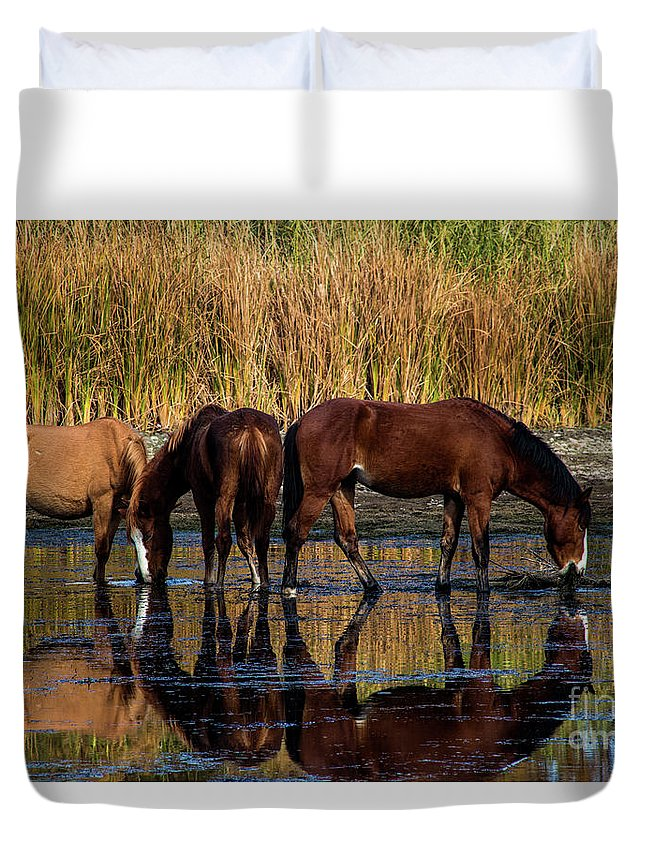 Arizona Duvet Cover featuring the photograph Salt River Horses by Kathy McClure