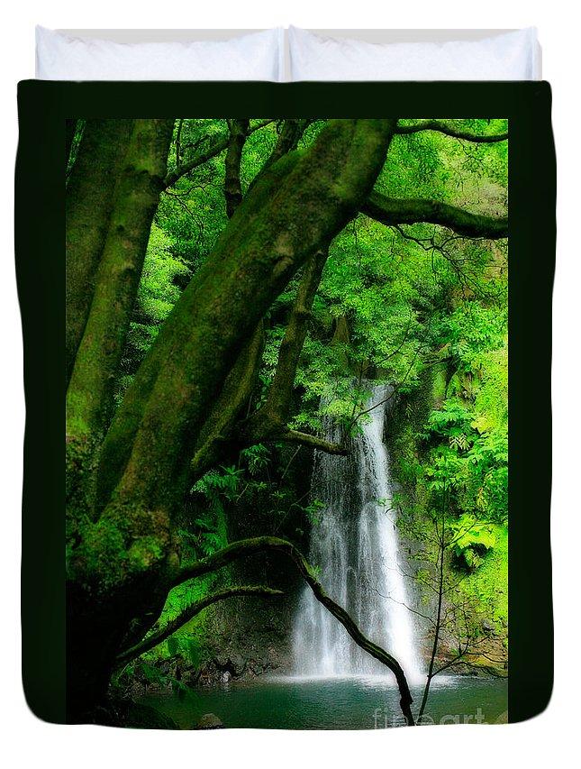 Environment Duvet Cover featuring the photograph Salto Do Prego Waterfall by Gaspar Avila