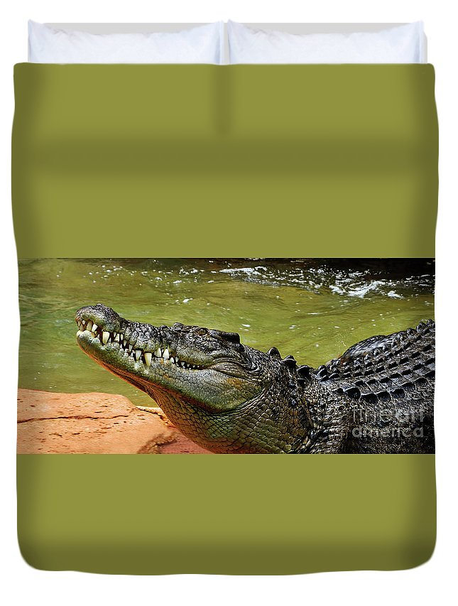 Saltwater Crocodile Duvet Cover featuring the photograph Saltwater Crocodile By Kaye Menner by Kaye Menner