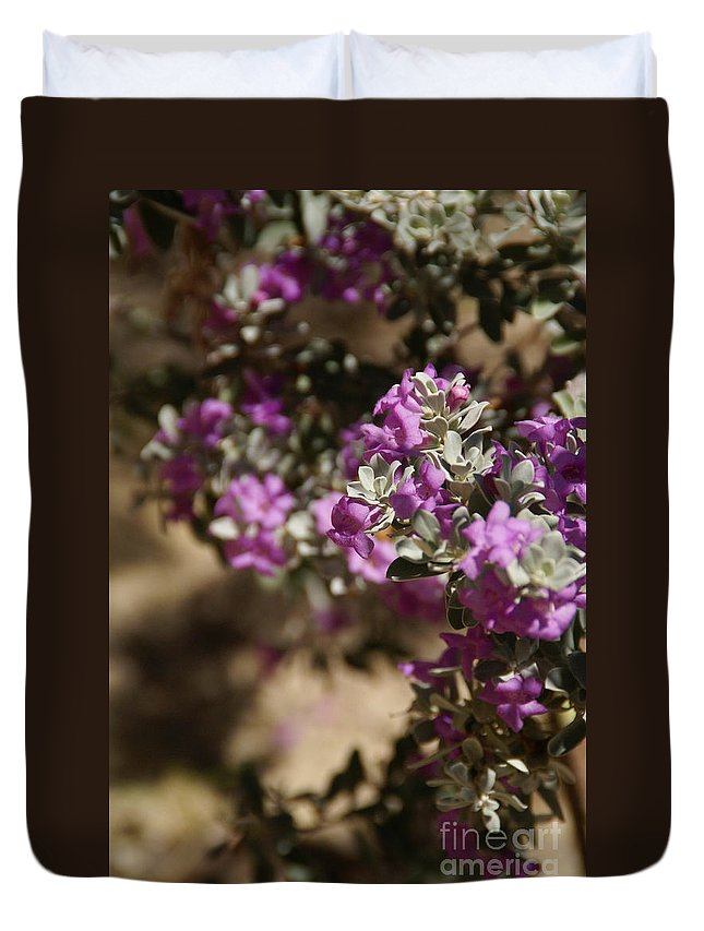 Sage Duvet Cover featuring the photograph Salvia Dorrii by Linda Shafer