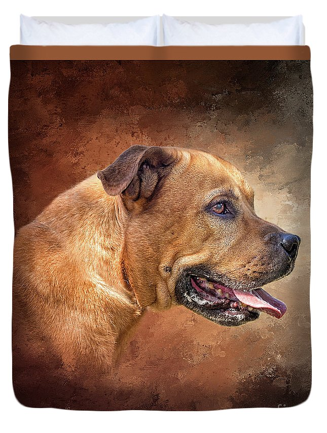 Pitbull Duvet Cover featuring the photograph Sami by Judith Flacke