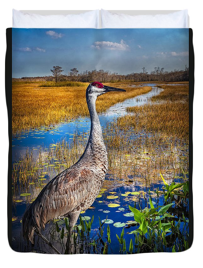 Birds Duvet Cover featuring the photograph Sandhill Crane In The Glades by Debra and Dave Vanderlaan