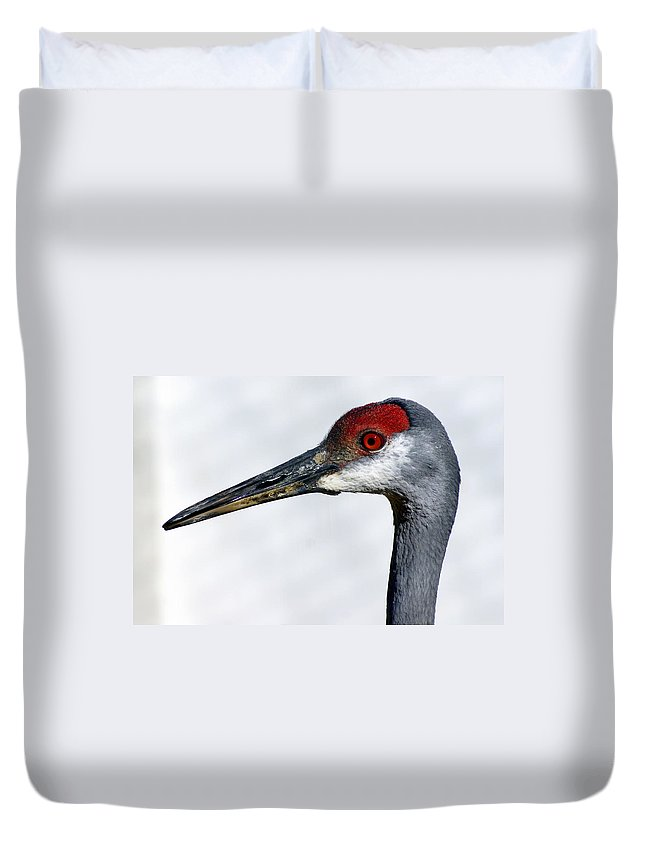 Birds Duvet Cover featuring the photograph Sandhill Crane by Marty Koch
