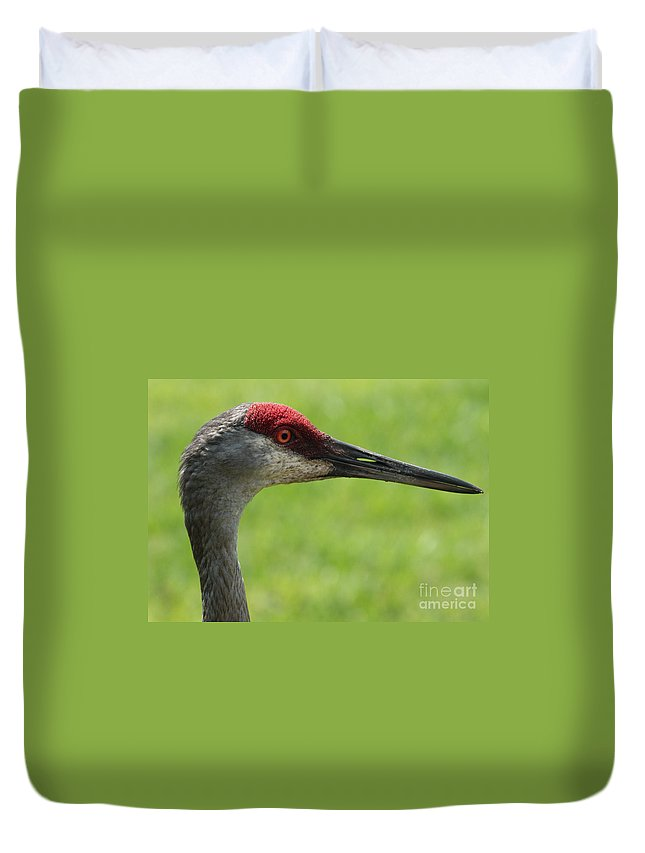 Sandhill Crane Duvet Cover featuring the photograph Sandhill Crane Profile by Carol Groenen