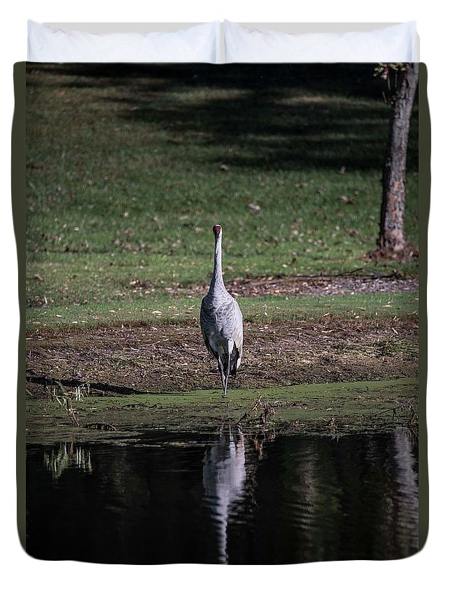 Sand Hill Cranes Duvet Cover featuring the photograph Sandhill Crane Soloing by David Bearden