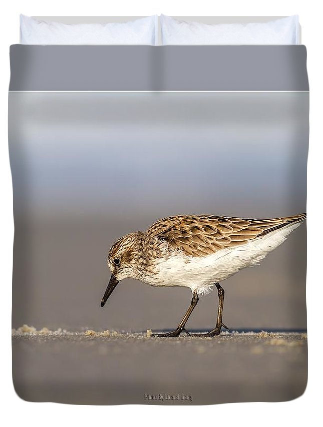 Wild Duvet Cover featuring the photograph Sandpiper by Quenel Jiang