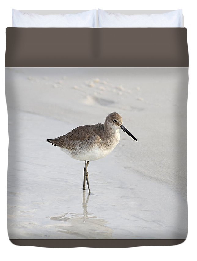 Sandpiper Duvet Cover featuring the photograph Sandpiper Stroll by Jim Clark