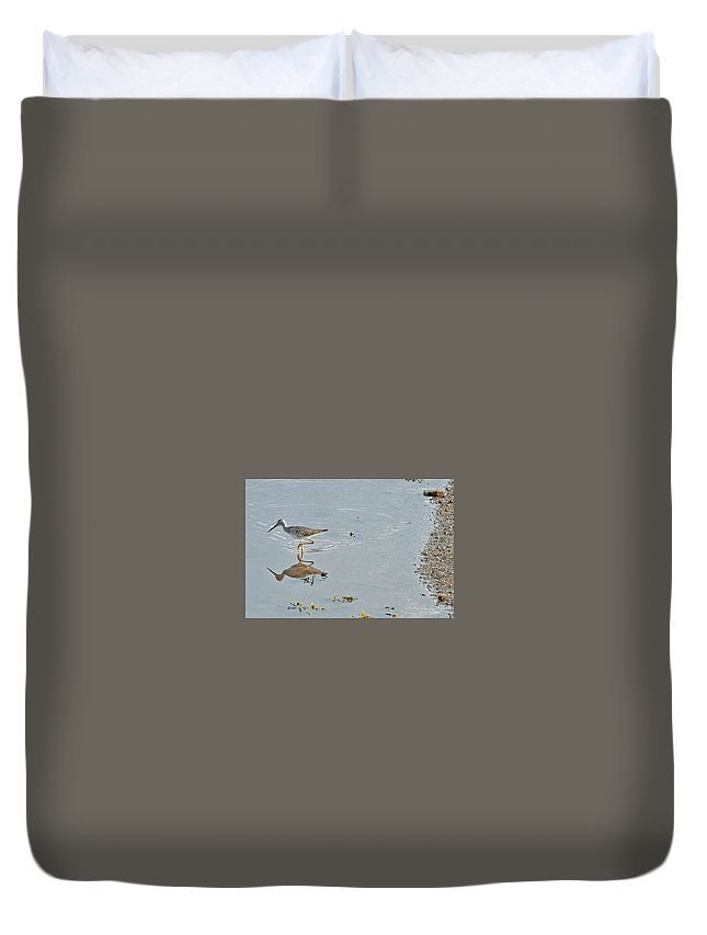 Water Fowl Duvet Cover featuring the photograph Sandpiper's Mirror by Colleen English