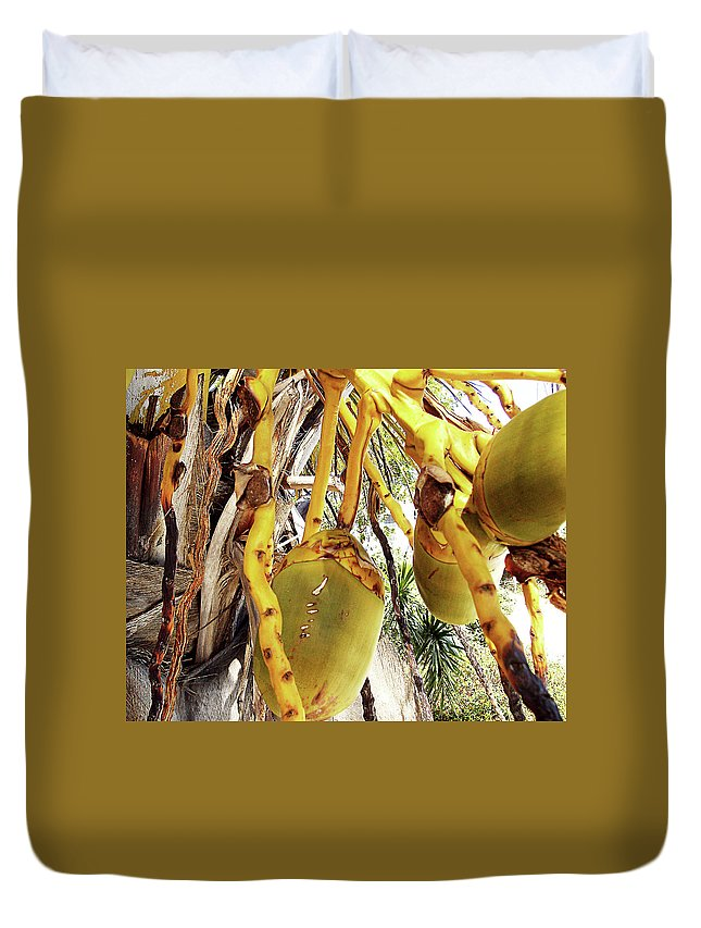 Florida Duvet Cover featuring the photograph Sanibel Coconuts GP by Chris Andruskiewicz