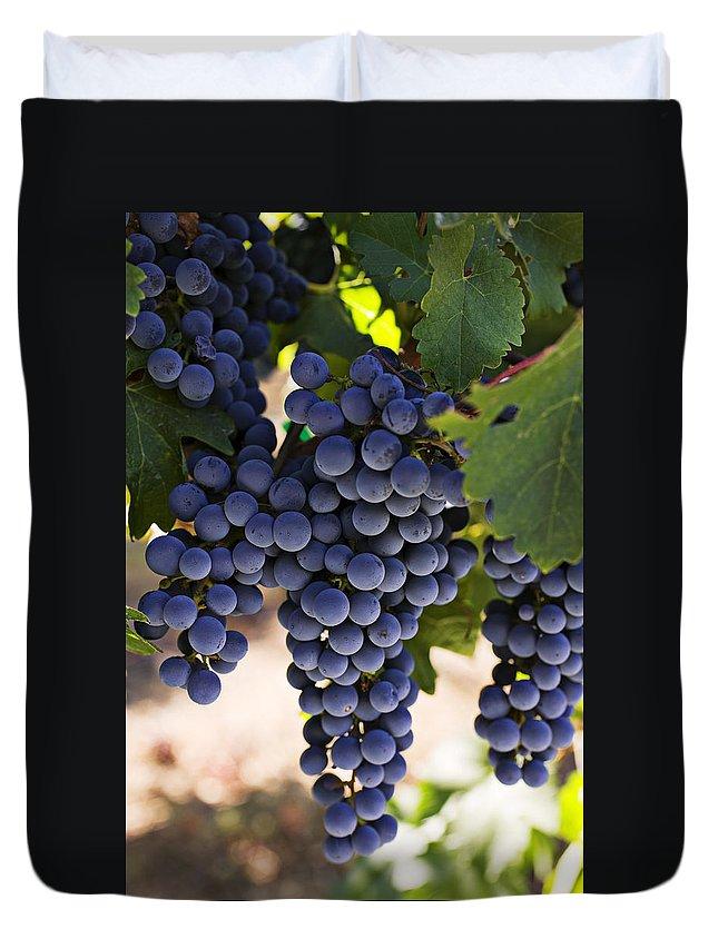 Sauvignon Duvet Cover featuring the photograph Sauvignon Grapes by Garry Gay