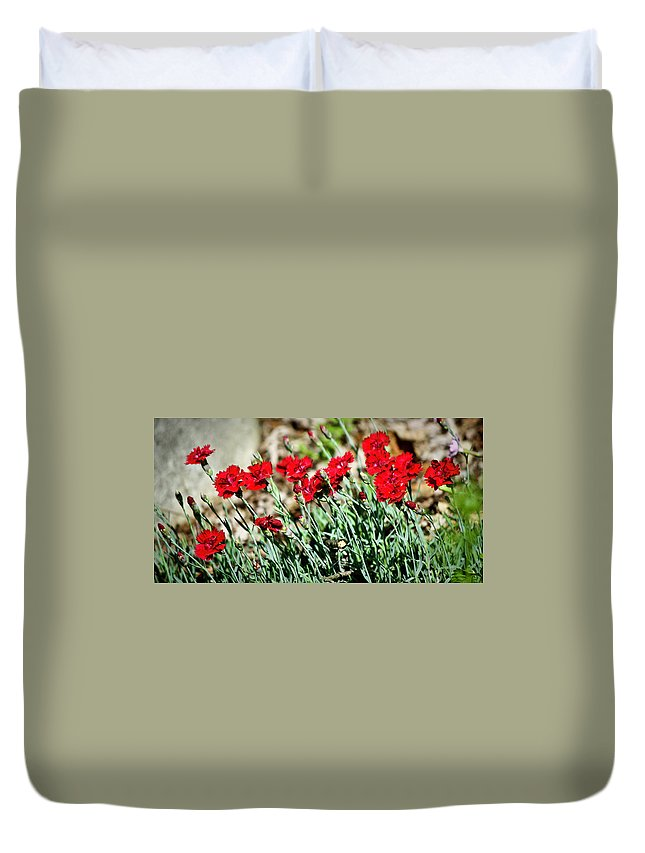 Dianthus Duvet Cover featuring the photograph Scarlet Red Dianthus by Teresa Mucha