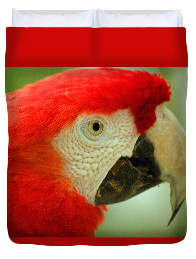 Parrot Duvet Cover featuring the photograph Scarlett Macaw South America by Ralph A Ledergerber-Photography