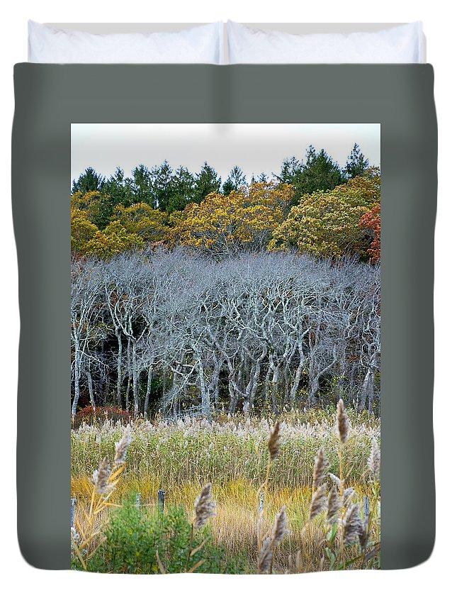 Scorton Duvet Cover featuring the photograph Scorton Creek Treeline by Charles Harden