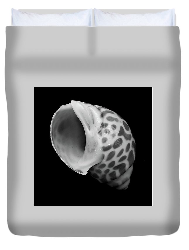 Nature Duvet Cover featuring the photograph Sea Shell by Skip Willits