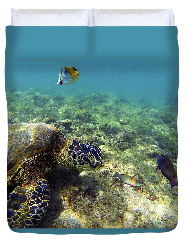 Sea Turtle Duvet Cover featuring the photograph Sea Turtle #1 by Anthony Jones