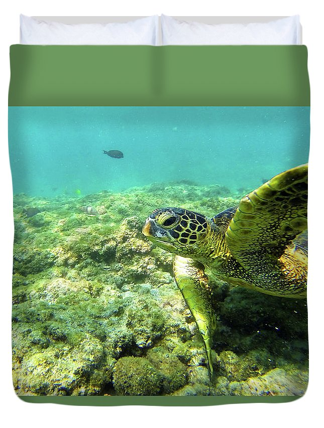 Underwater Duvet Cover featuring the photograph Sea Turtle #2 by Anthony Jones