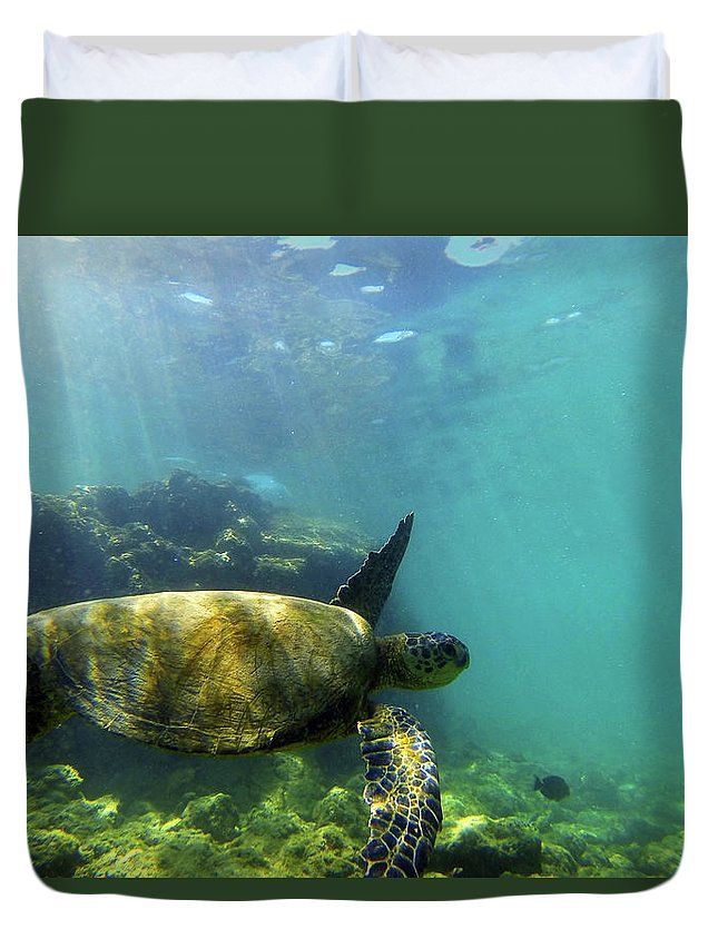 Sea Turtle Duvet Cover featuring the photograph Sea Turtle #5 by Anthony Jones