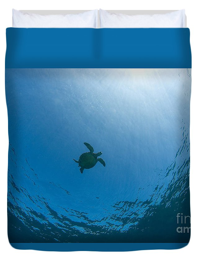 Animal Art Duvet Cover featuring the photograph Sea Turtle Silhouette by Dave Fleetham - Printscapes