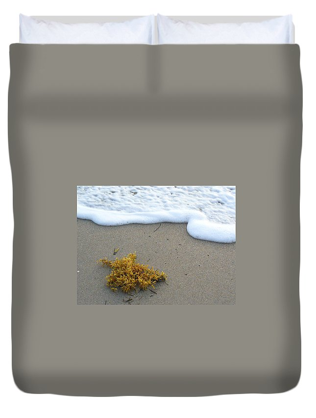 Foam Duvet Cover featuring the photograph Seafoam And Seaweed by Peggy King