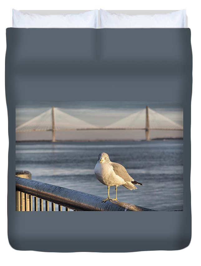 Charleston Duvet Cover featuring the photograph Seagull At Ravenel Bridge by Lynne Jenkins