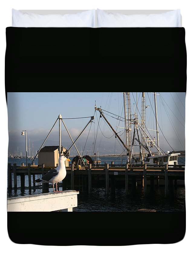 Boats Duvet Cover featuring the photograph Seagull Morro Bay California by Bill Mollet